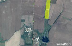 De vanzare 15,66 hectare balta naturala la Sanandrei - imagine 1