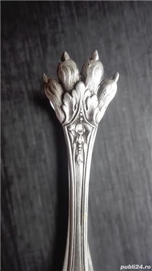 Argint cleste zahar  - imagine 1