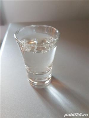 Vand palinca prune - imagine 1