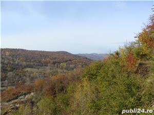 Proprietar teren deosebit cu priveliste frumoasa Brebu(PH),drum asfaltat,toate utilitatile,liniste  - imagine 10