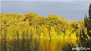 Vanzare vila pe malul lacului Pasare 3, Branesti , jud. Ilfov - imagine 2