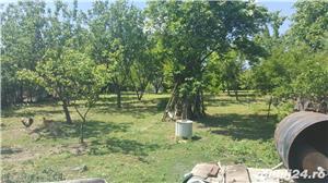 Vand casa batraneasca comuna MIhai Bravu - imagine 3