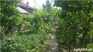 Vand casa batraneasca comuna MIhai Bravu - imagine 10