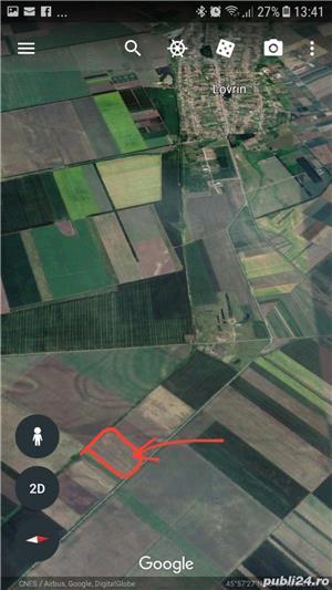 Teren extravilan 7 ha comasat la 40 km de Timisoara - imagine 3