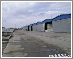 Teren intravilan 26.013 mp cu constructii, Satu Mare - imagine 2