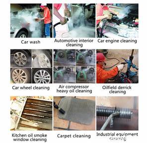 Detailing auto ,curatat  / dezinfectat tapiserii auto cu aburi sub presiune sect.6 - imagine 10