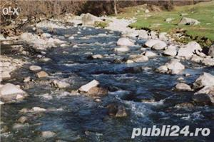 Vila la munte - imagine 7