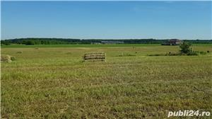 Vand imobil, inchiriez, fosta ferma vaci Branesti-Ilfov. Super pozitie - imagine 1