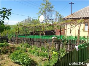 Casa cu 3000 mp in Babadag - imagine 6