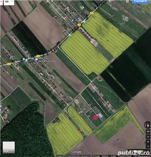 Teren intravilan Domnesti-Teghes, 748 mp - imagine 3