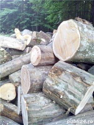 Lemne de foc carpen, fag, stejar, tei, molid. etc - imagine 8