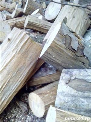 Lemne de foc carpen, fag, stejar, tei, molid. etc - imagine 6