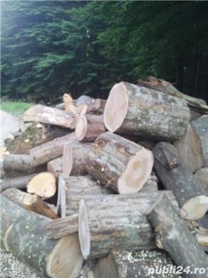 Lemne de foc carpen, fag, stejar, tei, molid. etc - imagine 1