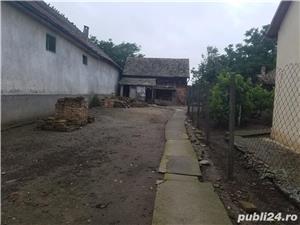 Casa Jamu Mare - imagine 4