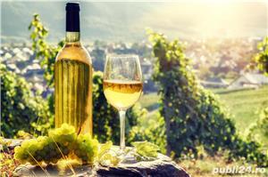Vand Vin Nobil si Rachiu/Tuica din tescovina si STRUGURI-Feteasca Alba,Riesling, sat Sahateni, Buzau - imagine 1