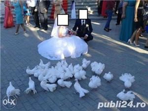 Aranjamente nunti si botezuri la cort sau local  - imagine 6