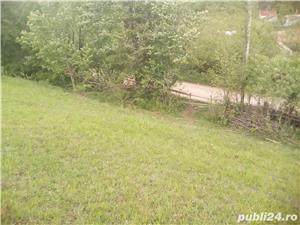 Teren in Bucovina - imagine 2