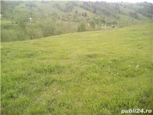 Teren in Bucovina - imagine 4