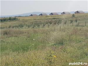 Teren 10000 MP Miroslava intravilan ( Valea Ursului )cu deschidere la DN 50 ml - imagine 10