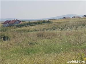 Teren 10000 MP Miroslava intravilan ( Valea Ursului )cu deschidere la DN 50 ml - imagine 8