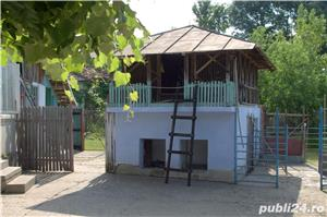 Vand casa (2 imobile) +teren, Sat. Birlogu, Arges - imagine 3
