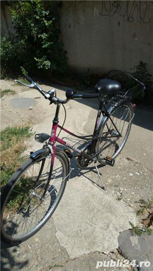 Vand bicicleta epple - imagine 7