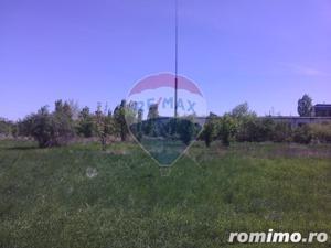 Teren de 5,000 mp Oradea - Zona Industriala Borsului - imagine 6