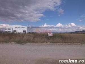 Ghimbav - teren pretabil constructii industriale - imagine 4