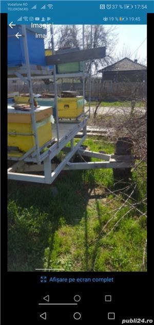 Platforma apicola - imagine 2