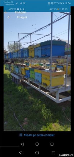 Platforma apicola - imagine 3