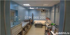 Cotroceni - Facultatea de Medicina - demisol vila - imagine 2