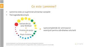 Laminine - activeaza celulele stem din organism - imagine 5