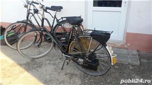 bicicleta  saxonette   cu motor pe benzina - imagine 2