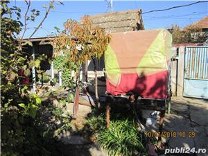 Vand casa in Corabia , Valea Seaca - imagine 17