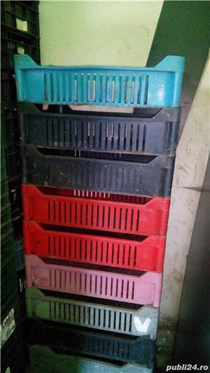 Lãzi din plastic - imagine 4