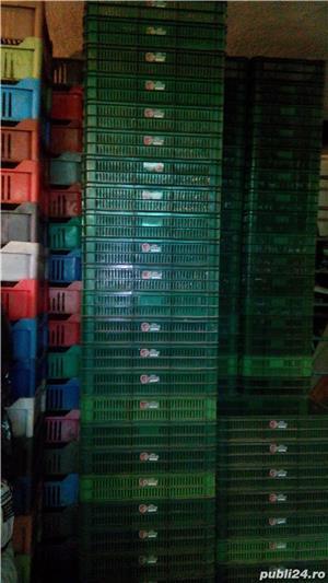 Lãzi din plastic - imagine 5