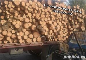 LEMNE DE FOC/FAG/470/PALETUL,Transportul Gratuit in Bucuresti!! - imagine 1