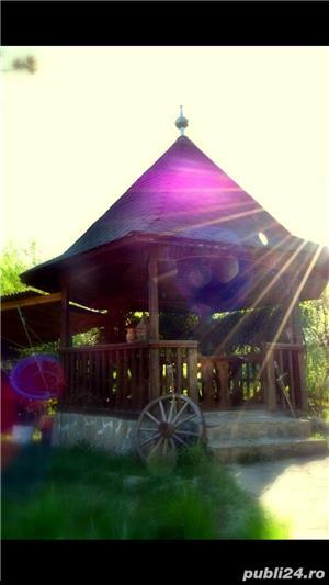 Cabana de inchiriat Calimanesti Caciulata - imagine 4
