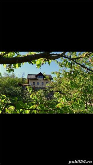 Cabana de inchiriat Calimanesti Caciulata - imagine 3