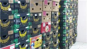 600 cutii, bax , banane, depozitat, transportat fructe,legume, diverse,mutari - imagine 1