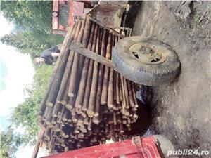 Cumpăr lemn subțire (pari, tutori) - imagine 1