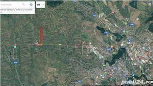 Teren 10.000 mp langa Weber, Vorona, la DN E58 spre Gura Hum - imagine 3