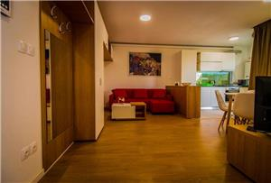 Apartamente Regim Hotelier - imagine 3