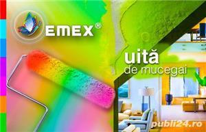 Vopsea Lavabila Antimucegai EMEX  • Bidon 24 Kg •  - imagine 2