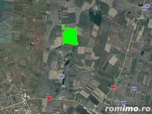 BRUKEN - teren de vanzare, 110 ha in Arad (Sofronea) - imagine 3