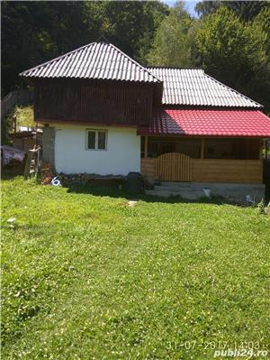 Vand proprietate in Bradulet, Arges. 35000euro. - imagine 3