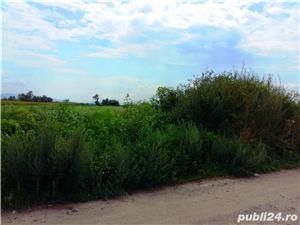 Teren la balta Balata și râul Mureș (variante schimb cu autoturism) de vânzare  - imagine 7