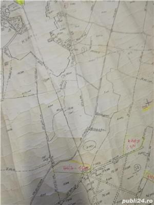 Proprietar, vand teren extravilan in suprafata de 1,87 ha - imagine 7
