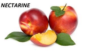 Vind pomi fructiferi 10LEIei-buc-neg- - imagine 12