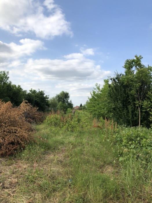 Teren Mihailești-Popesti-15 km de Bucuresti - imagine 3
